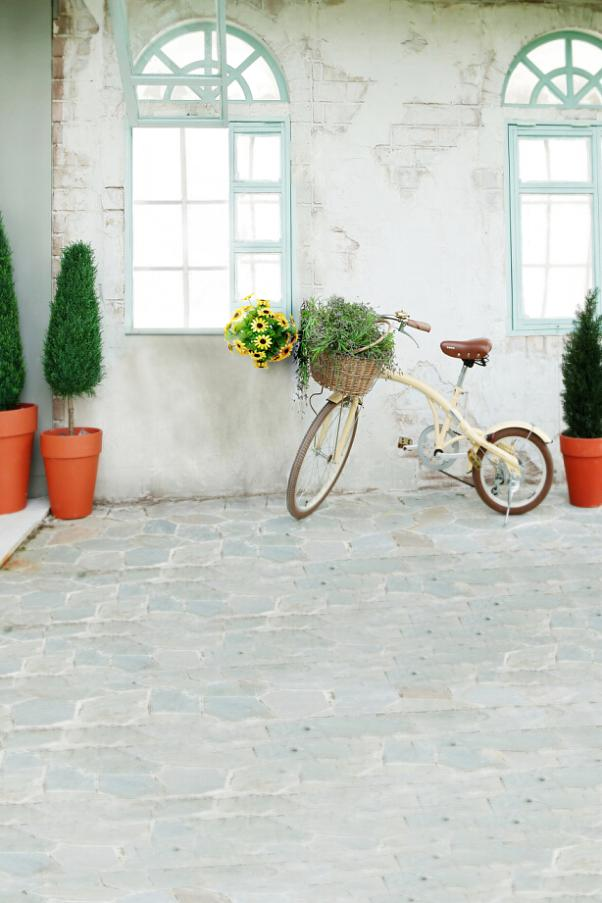 photography backdrops 300cm*600cm(10ft*20ft) Bicycle potted shrubs windows vinyl backdrop LK4310<br><br>Aliexpress