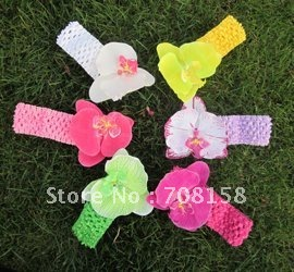 free shipping, 500set Crochet Headbands + Moth Orchids flowers/Baby Hair bows,Headbows,Children Head Accessories.6 colors(China (Mainland))