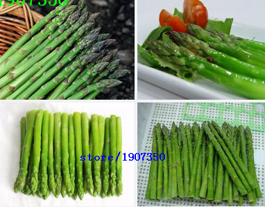 100seeds/bag Non-transgenic Asparagus seeds lose weight Seasons balcony potted vegetable seeds domestic(China (Mainland))