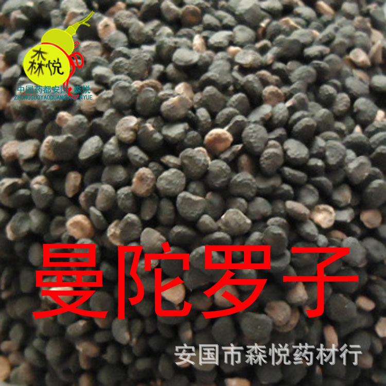 The uncommon TCM Datura stramonium seed sub day eggplant Hu Qiezi Qufengzhitong asthma<br><br>Aliexpress