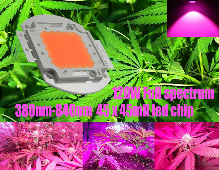 3pcs/lot Time-limited 2014 High Quality 120 Leds Chip Cob Full Spectrum 380-840nm 120w Diy Grow Light for Growth And Bloom<br><br>Aliexpress
