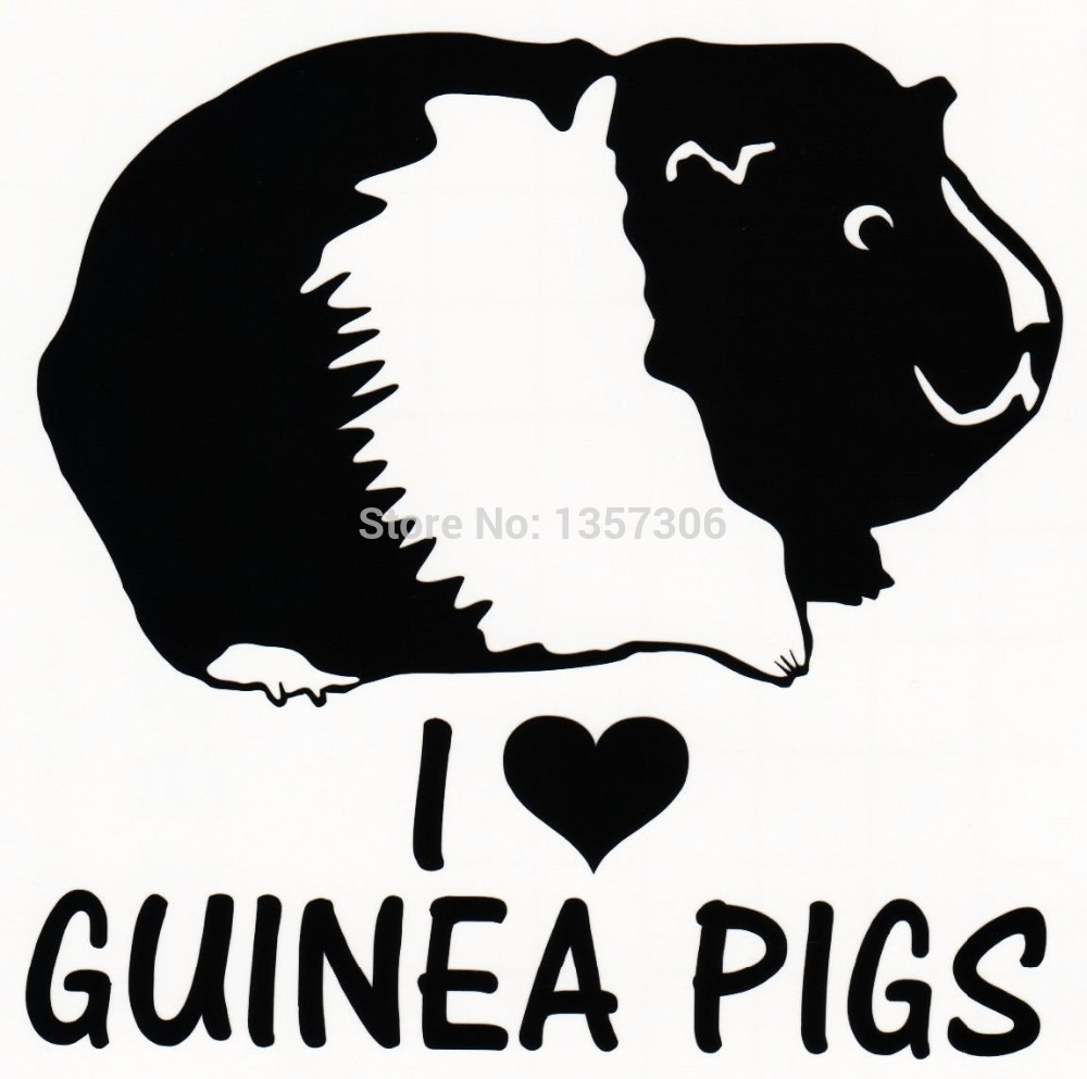 Online Buy Wholesale Car Stickers Pig From China Car Stickers Pig - Truck door decals   online purchasing