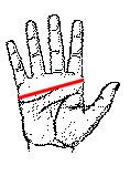 handsize.JPG