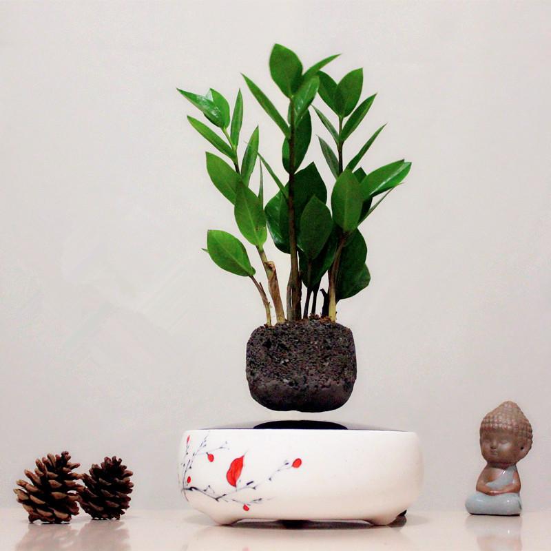 japon pots promotion achetez des japon pots promotionnels sur alibaba group. Black Bedroom Furniture Sets. Home Design Ideas