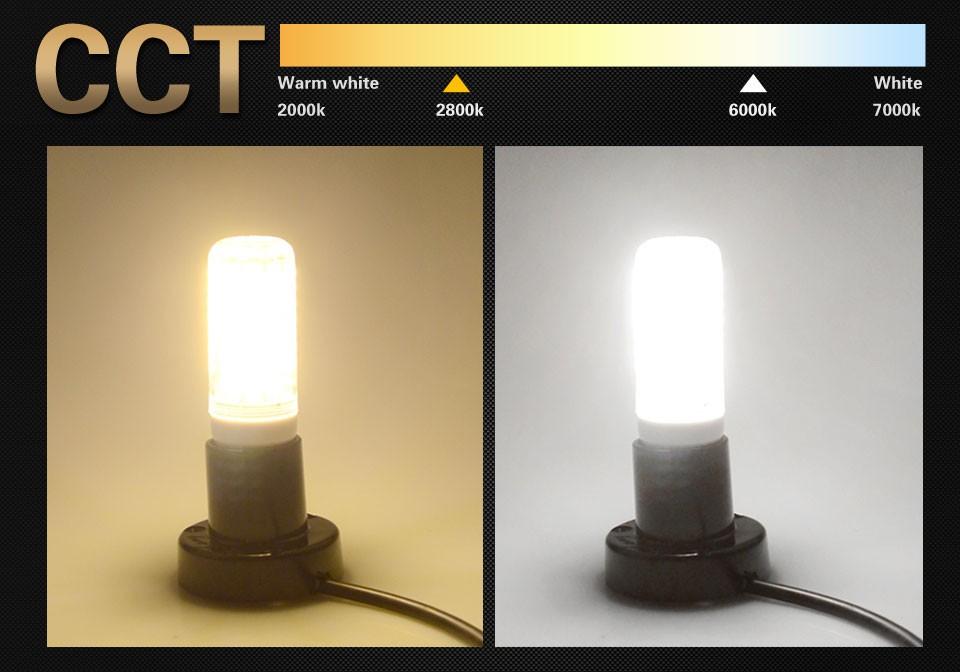 LED LAMP (6)