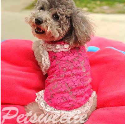 L7-208 015 Pet Puppy Vest Coat Spring Summer Floral Dog Clothes Rose Chihuahua Vest (Size SS-ML)(China (Mainland))