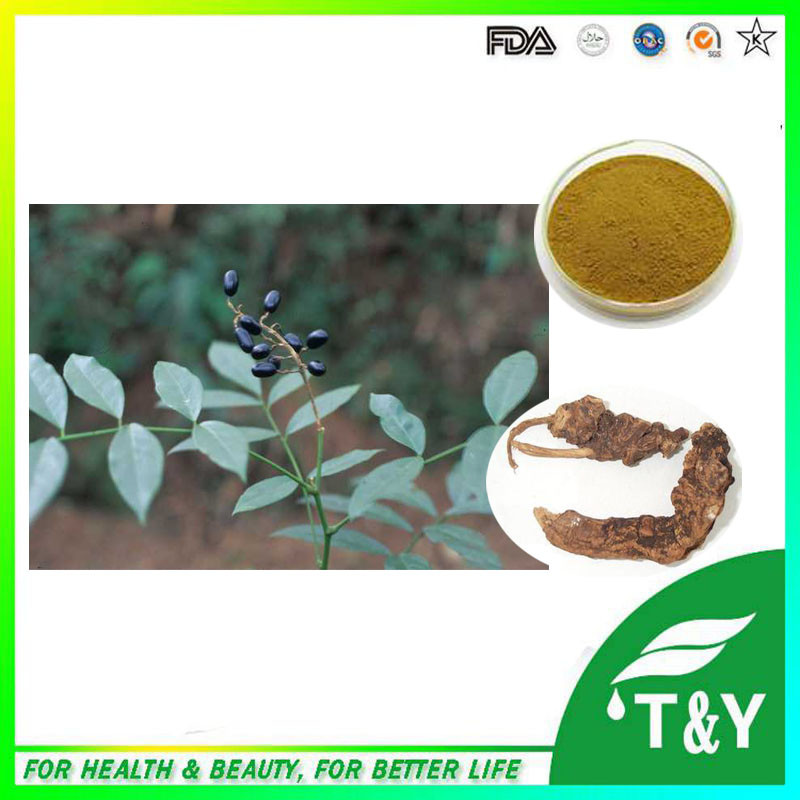 Manufacturer supply best price High quality tonkin sophora angustifolia root extract 500g<br><br>Aliexpress