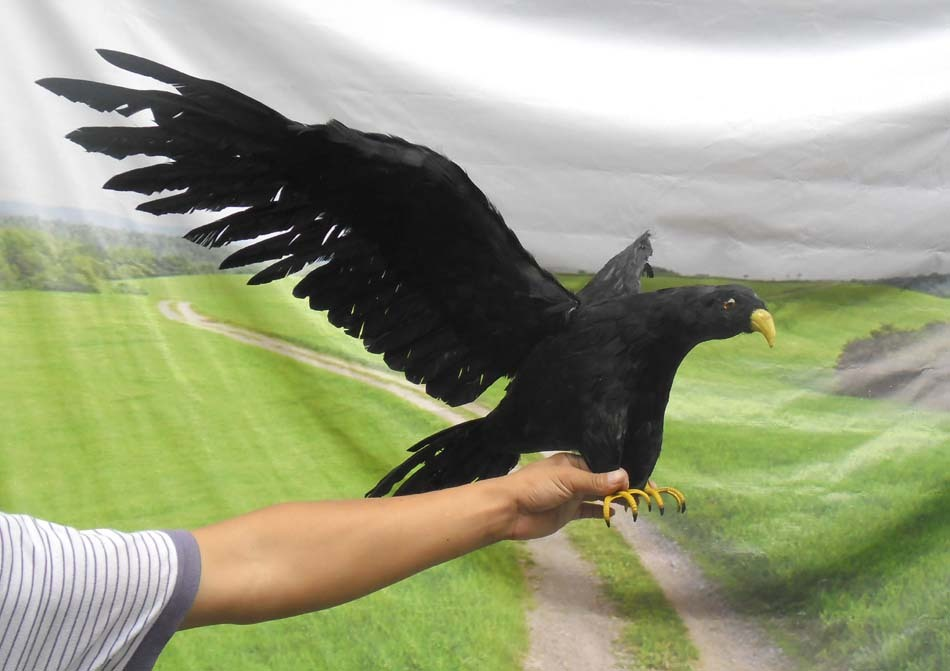 new simulation black bird toy plastic & furs flying crow model gift about 90x45cmc0080(China (Mainland))