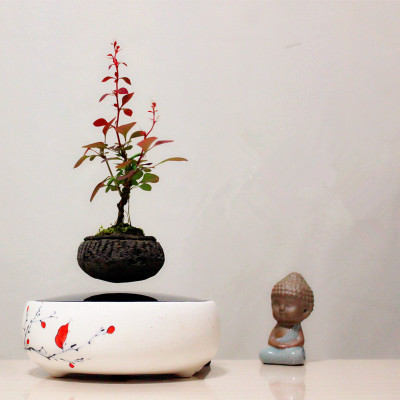 2016 japan high-tech products magnetic levitation air bonsai (no plant)ceramic flower small pot culture 004 free shipping(China (Mainland))