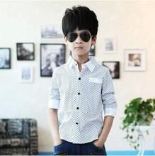 2015 NEW polka dot design long sleeve boys shirts spring fall turn down collar children shirt