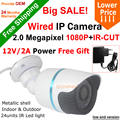 Big SALE H 264 Waterproof 1920 1080P 2 0MP 24 leds IP Camera ONVIF 2 0