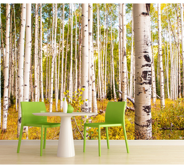 Free shipping birch trees forest nature 3d wallpaper for Birch tree forest wall mural