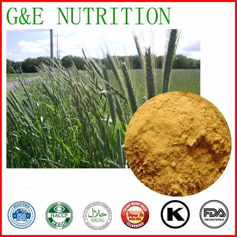 100% nutural Oat Extract,Oat Seed Extract,Oat Extract Powder    10:1 700g
