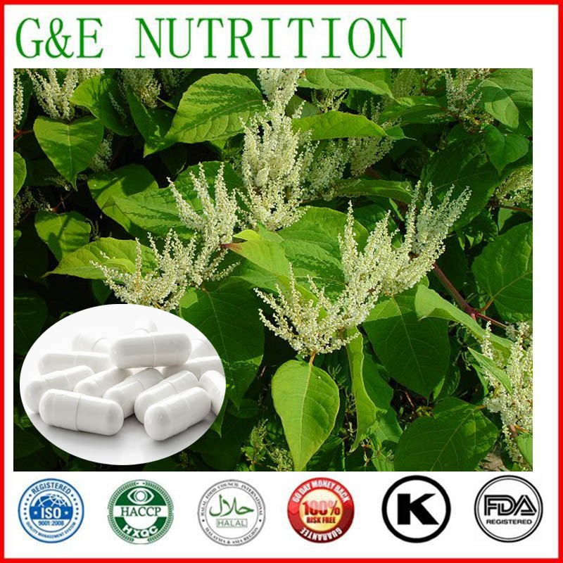 High Quality Effective Ingredient Resveratrol Capsules, 500mg x900pcs<br><br>Aliexpress