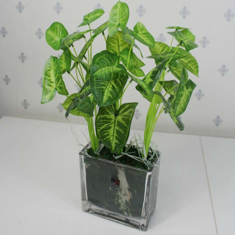 Garden Decoration Green Leaves Potted Plant Flowers Lotus