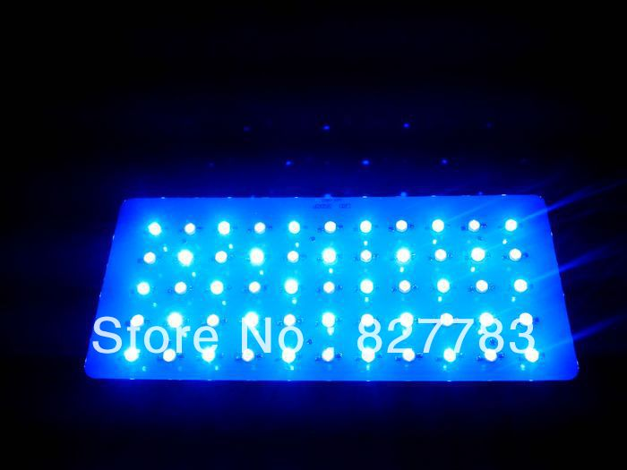 55*3w Free shipping 165w Dimmer LED Aquarium Lights 28blue+27White 2pcs/lot Two Switch Two plug coral reef fish bowl led lights(China (Mainland))