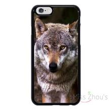 For iphone 4/4s 5/5s 5c SE 6/6s plus ipod touch 4/5/6 back skins mobile cellphone cases cover Red/Grey Wolf in Wild Animal