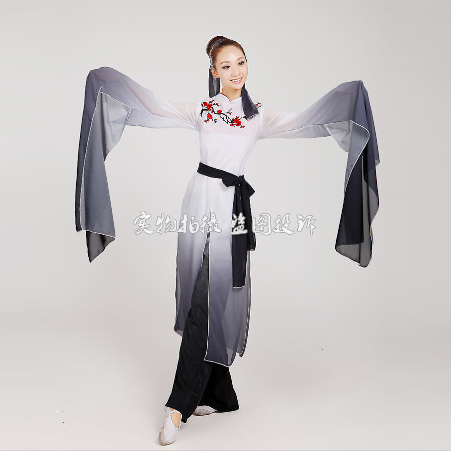 woman Gradient ink water sleeves costumes Chinese Classical dance clothes Plum tears embroidery Hanfu ancient fairy set(China (Mainland))