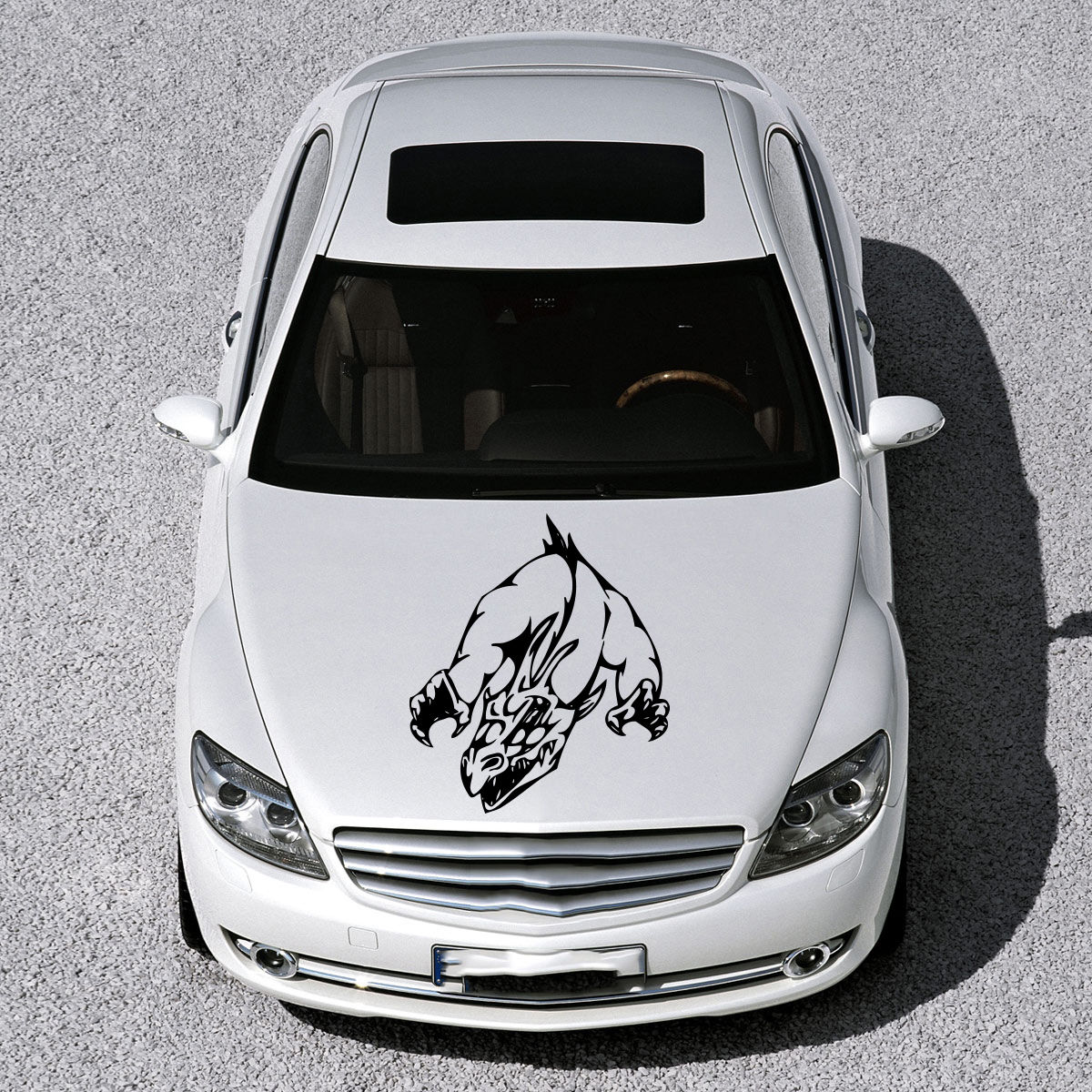 Car sticker design online - Car Hood Vinyl Sticker Decals Graphics Design Art