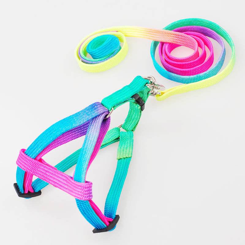 Novelty Smart Rainbow Pet Dog Puppy Nylon Rope Leash slip Lead Neck Strap Collar Harness Unique Pet accessories Hot(China (Mainland))