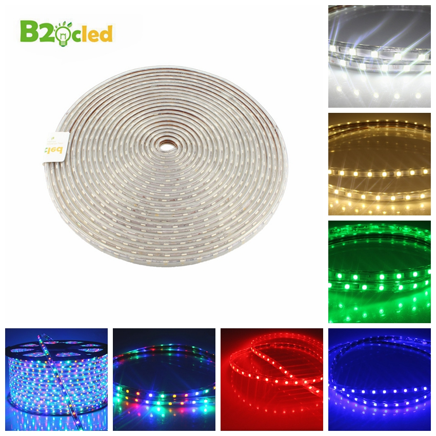 Fashion new 1 -100m AC 220V 60 LED/m SMD5050 strip LED light IP65 waterproof Suitable for home decoration lighting EU warm white(China (Mainland))