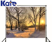 Romantic Theme Backdrop White Snow Trees Newborn Photography Backdrops Sun Grass Way Backgrounds For Photo Studio
