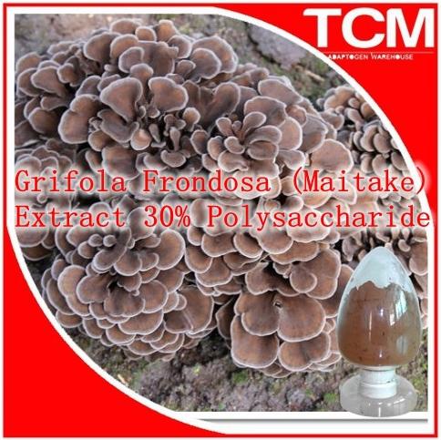 Фотография 500gram Grifola Frondosa (Maitake) Extract 30% Polysaccharide enhance the immune system regulate blood pressure, glucose