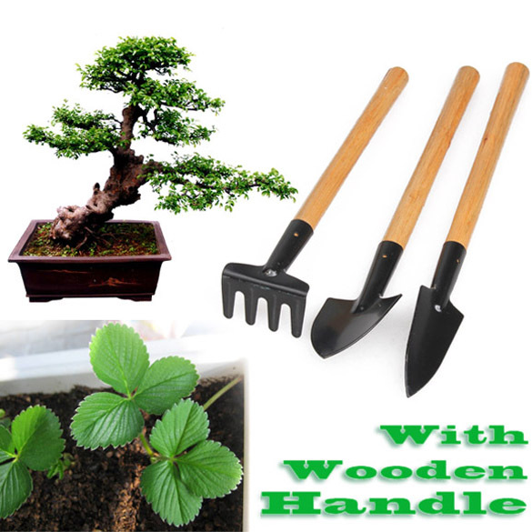 3pcs Mini Garden Plant Tool Set With Wooden Handle Gardening Tool