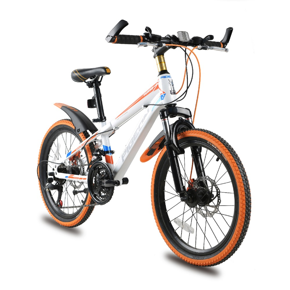 High Carbon Steel 20/24 inch 18-speed cross-country mountain bike 4.0 oversized bicycle tire Dirt Bikes for Children(China (Mainland))