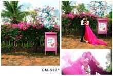 Photography Backdrop Balloon Tree Brand Backgrounds For Photo Studio Wedding Background Cm-5871