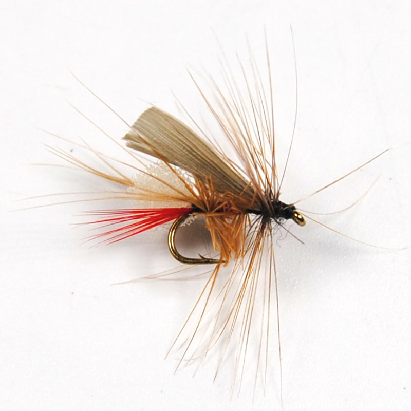 10PCS Caddis Foam Fly Fishing Trout Dry Fly Mayfly Bait #14(China (Mainland))