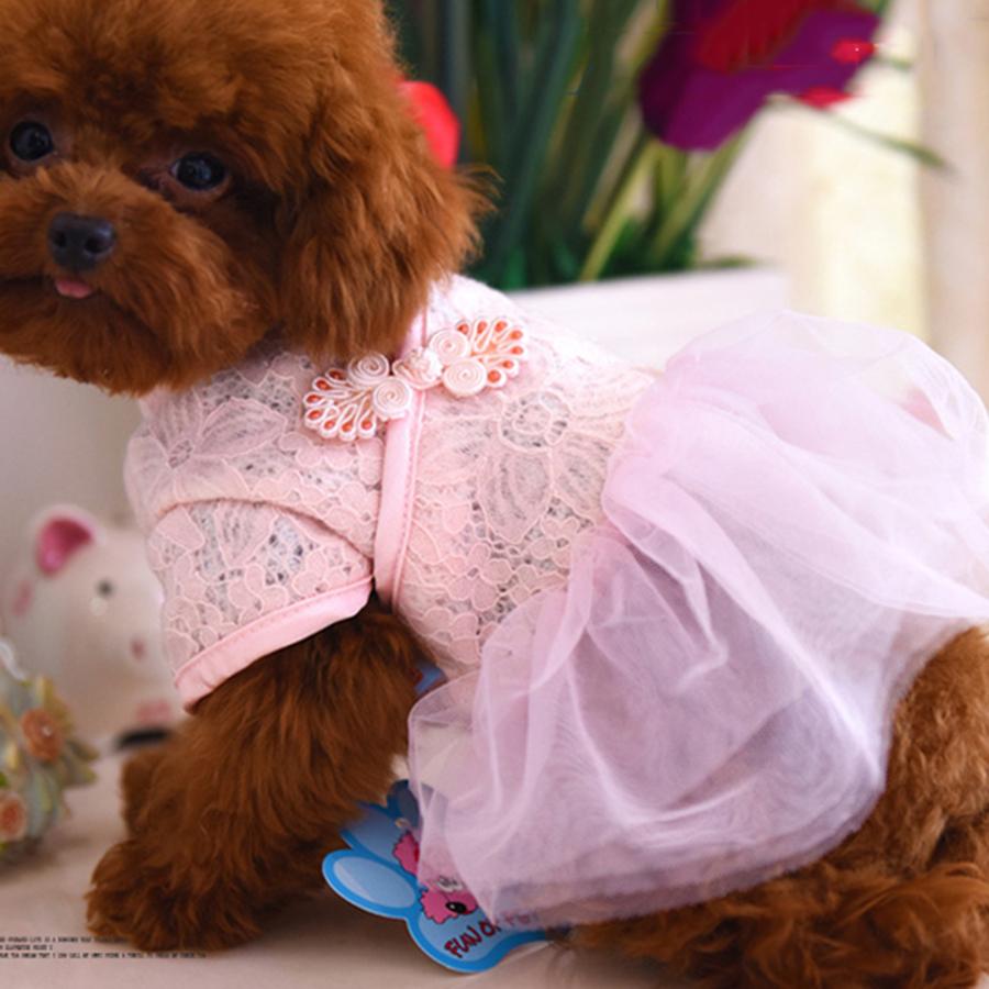 Платья Для Маленьких Собак