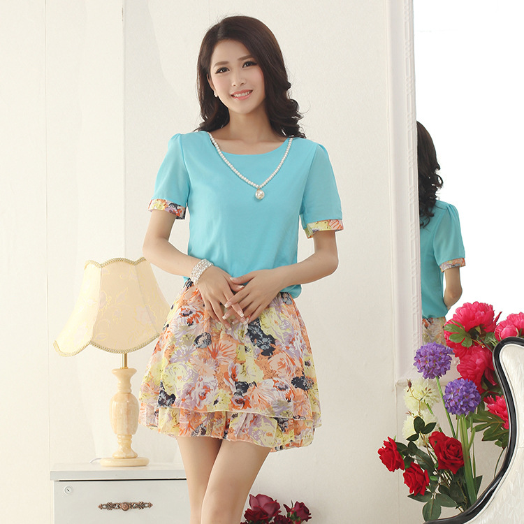 Chiffon floral dress Han Guodong in the summer of door clothing wholesale shop a of plus size free(China (Mainland))