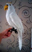 large 43CM simulation white parrot toy polyethylene & fur parrot model decoration gift t151