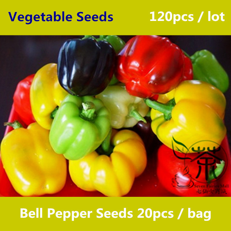 Mainly Used For Shredded Salad Bell Pepper Seeds 120pcs, Sweet Pepper Vegetable Seeds, Bright Colors Mixed Capsicum Annuum Seeds(China (Mainland))