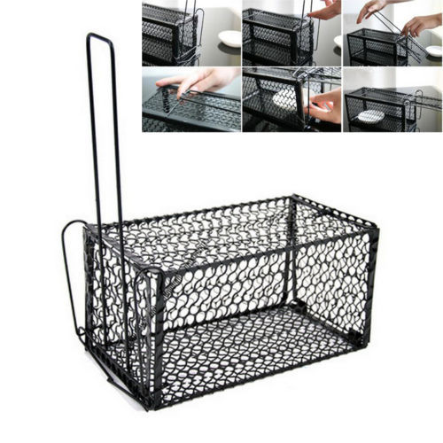 Rat Catcher Spring Cage New 1 Pieces Trap Outdoor Humane Live Indoor Animal Rodent ZBT027(China (Mainland))