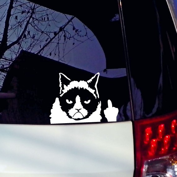 1PC 11*16cm 2016 New Design Car stickers Grumpy Cat The Bad cat fashion cars motorcycles decal styling accessories decoration(China (Mainland))