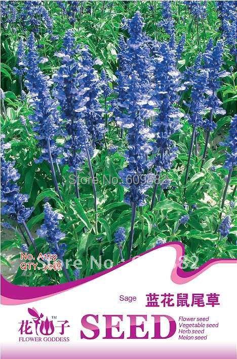 купить Карликовое дерево FLOWER GODDESS 3 * 150 A159 недорого