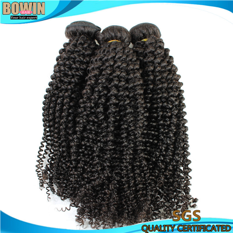 10bundles Curly Virgin Hair Price Peruvian afro Kinky Curly Unprocessed Bowin Hair Prodcuts