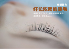 Free Shipping Eyelash Growth Treatments Liquid Thicker Longer Slender 15 days Grow Eyelashes Have Effect