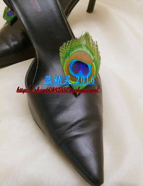 Shoes Accessories 1