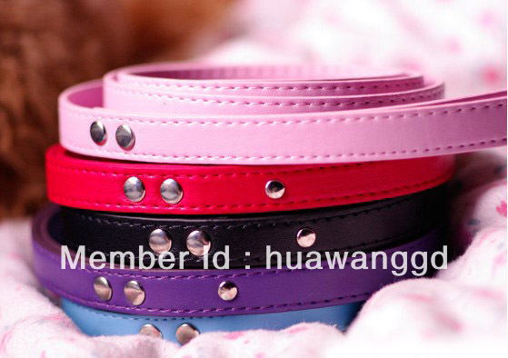 Free shipping 5colors for selection plain cat lead dog pet leash(China (Mainland))