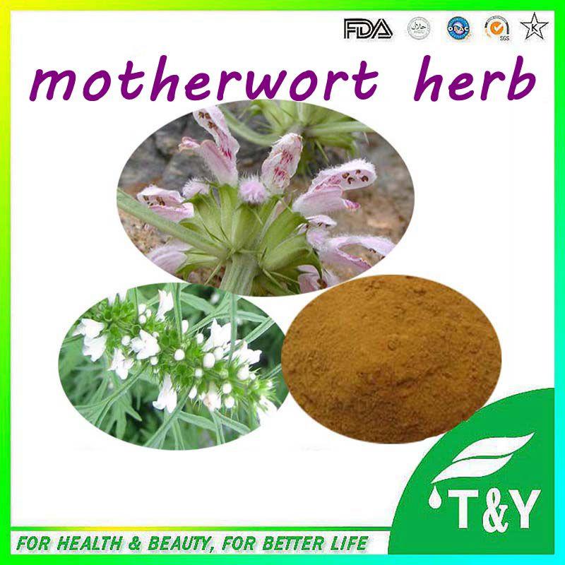 Motherwort Herb Extract/Herba Leonuri Extract/Motherwort Herb P.E.<br><br>Aliexpress