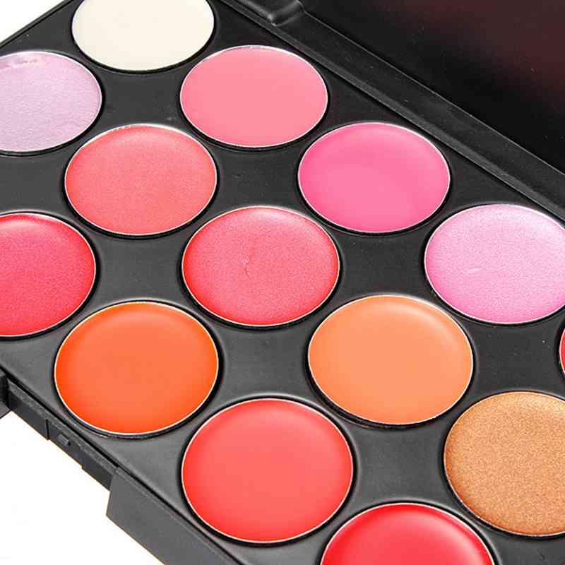 Pro 15 Color Cosmetic Lipsticks Lip Gloss Makeup Palette Women Lady Beauty DIY Tools Free Shipping(China (Mainland))
