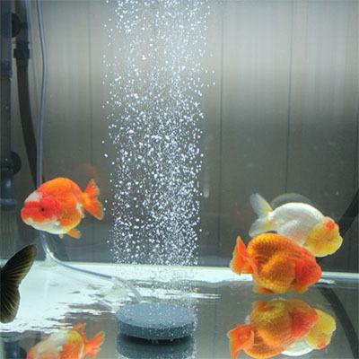6cm aquarium fish tank air stone sintered air bubble stone for Fish tank aerator