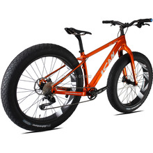 ICANBikes carbon complete bicycle Golden color popular fulling snow bike fatbike wheels and frameset(China (Mainland))