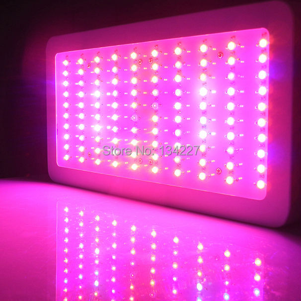 Wholesale Price 300W full spectrum led grow lights Dimmable for Indoor Plant Flower veg Hydroponics Lamp Panel USA/DE/AU Stock(China (Mainland))