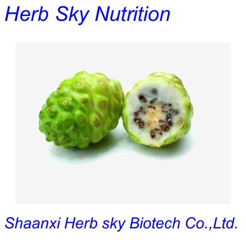 Spray Dried Morinda Citrifolia P.E Noni Extract Noni Fruit Powder Noni P.E Morinda Citrifolia Extract 500g/lot free shipping