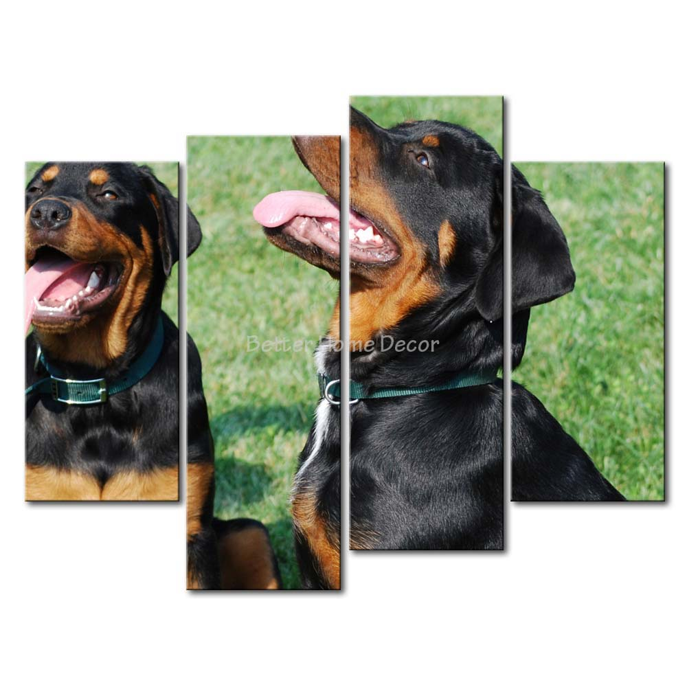3 Piece Wall Art Painting Rottweilers In The Grass Print On Canvas The Picture Animal 4 5 Pictures Oil Prints For Home Decor(China (Mainland))