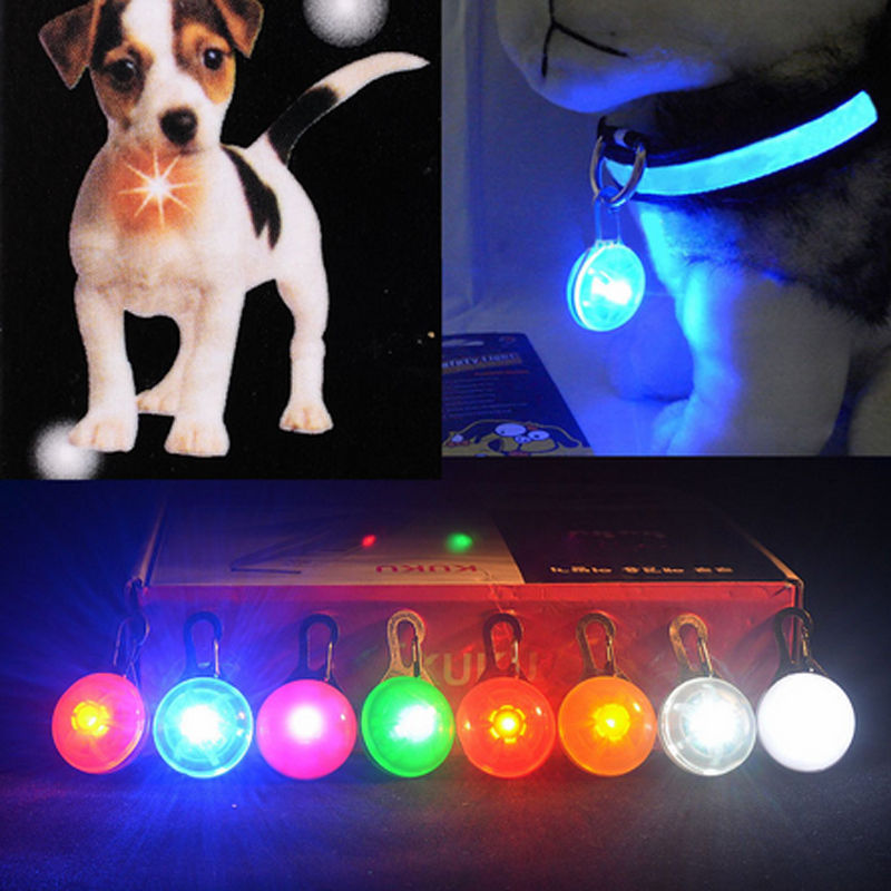 Hot Fascinating Pet Dog Cat Puppy LED Flashing Collar Safety Night Light Pendant(China (Mainland))